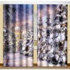 ФотоШторы Зимняя аллея Код 2159